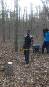 practicalminedness-woodcutting 7