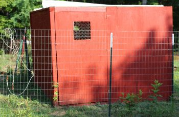 Walk-in chicken coop