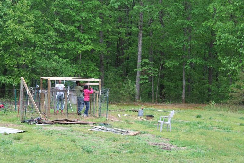 walk-in chicken coop frame